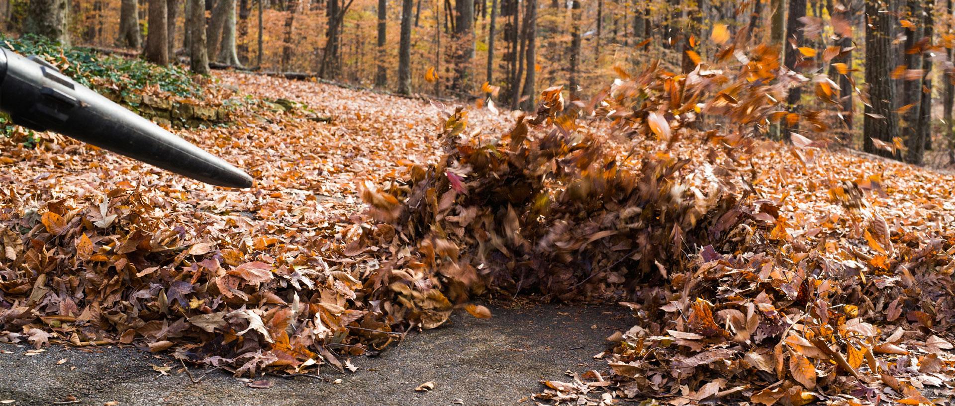 Spring Cleanup Amp Fall Cleanup Brooks Tilley Medicine